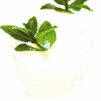 Fresh mint margaritas!! Quick and easy to make with just 4 ingredients, and so refreshing and delic