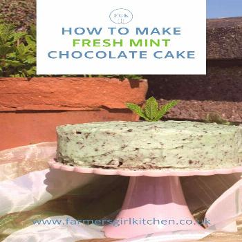 Frsh Mint Chocolate Cake Recipe  Bring the freshness of garden mint to your baking with this delico