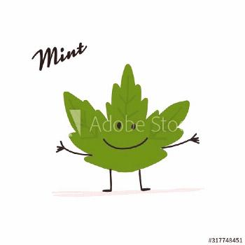 Funny mint leaf, character for your design ,