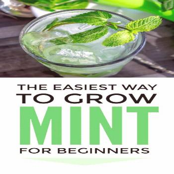 Growing Mint In Pots From Cuttings Growing mint tips - how to grow mint in pots and containers for