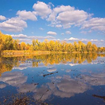 Minnesota Fall Foliage + Your Guide to the Best Fall Foliage in USA // Local Adventurer
